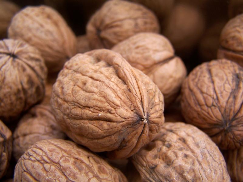 Как хранить грецкие орехи в домашних условиях - очищенные и в скорлупе, можно ли класть в холодильник, сколько держатся, советы