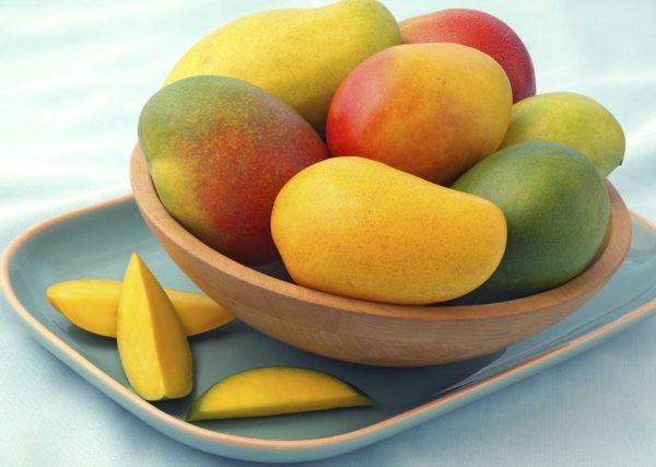 Тропический гость — манго