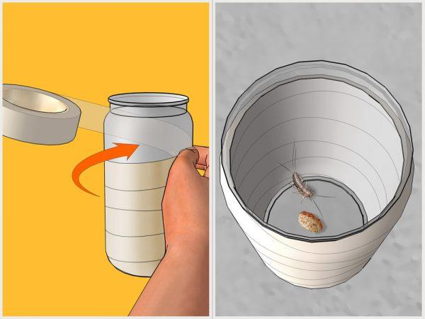 Стеклянная ловушка для чешуйницы