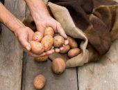 Хранение картошки в мешке