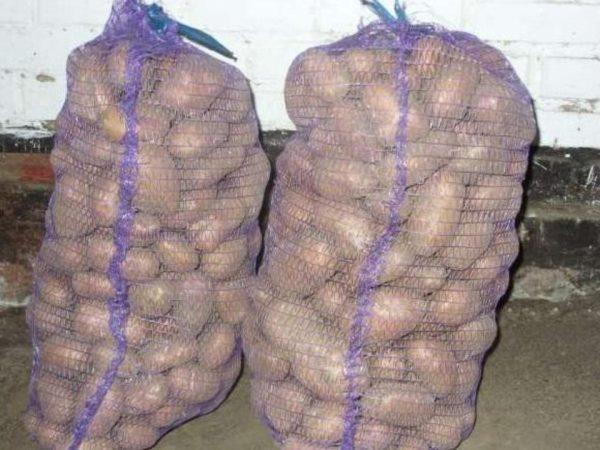 Хранение картошки в сетках