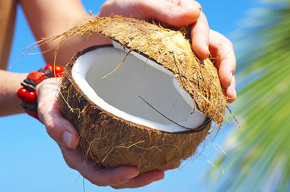 Раскрытый кокос