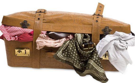 Как вывести клопов из квартиры самостоятельно и чего они боятся