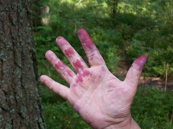 пятна черники на руке
