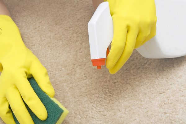 Чистят светлый ковёр