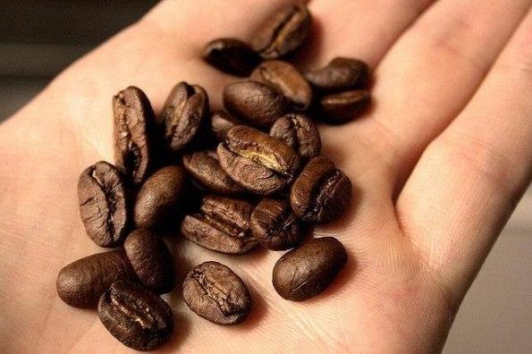 Зёрна кофе на ладони