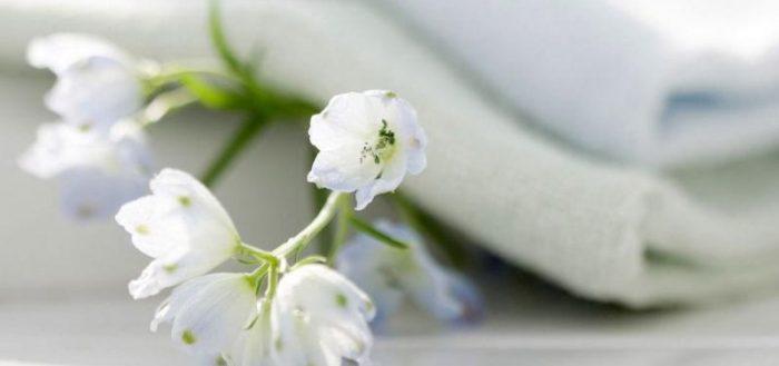 Чистое белье и белые цветы
