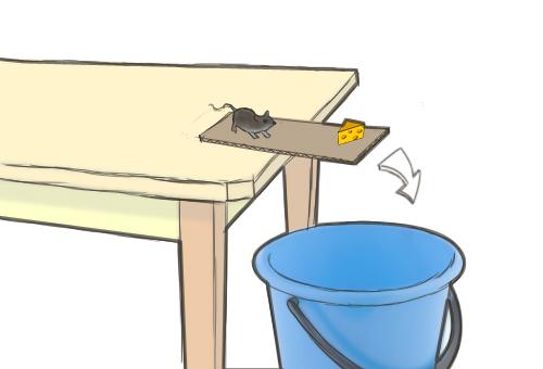 Ловушка для крысы из ведра с концентрированным соляным раствором