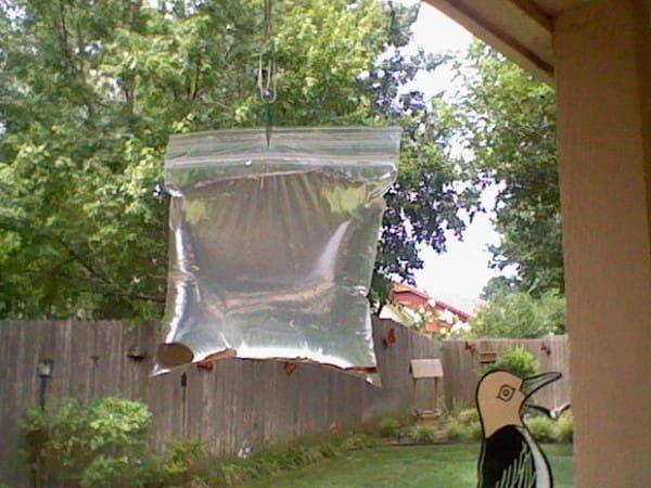 Пакет с водой висит в доме
