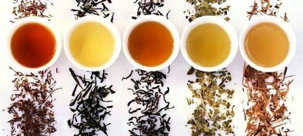 Пять видов чая в виде напитка в кружках и сухих листьев