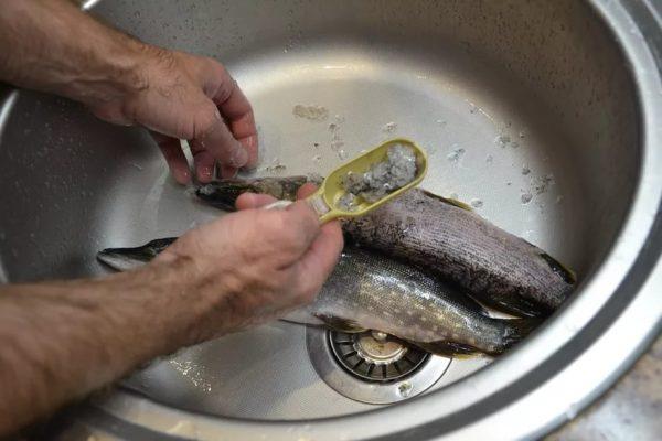 Рыбочисткой удаляют чешую
